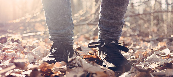 08_negative-space-autumn-fall-leaves-forest-jamie-street_rev